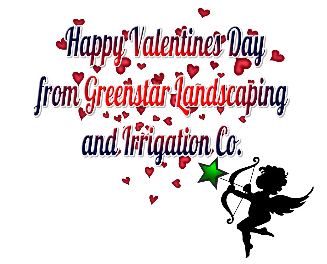 Happy Valentines Day from Greenstar